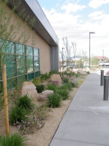 landscaping near front entrance of Senior Facility