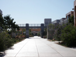 main walkway through campus