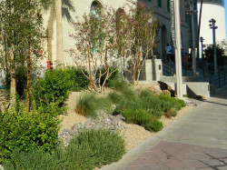 Mob Museum landscaping at SW corner